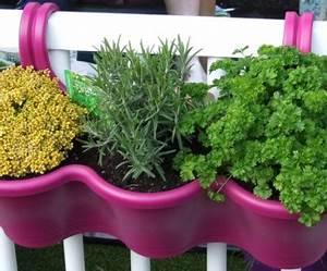 Welche Pflanzen Für Balkon : kr uter pflanzen ein balkon voller duft ~ Michelbontemps.com Haus und Dekorationen