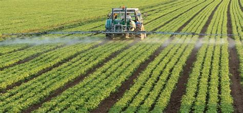 agricultural engineering eligibility criteria