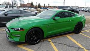 2019 Mustang Need For Green | Green mustang, Mustang, Ford mustang 2016