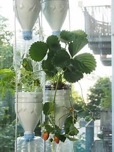 Pflanzen Bewässern Pet Flaschen : 89 besten basteln mit plastikflaschen bilder auf pinterest pet flaschen plastikflaschen und ~ Whattoseeinmadrid.com Haus und Dekorationen