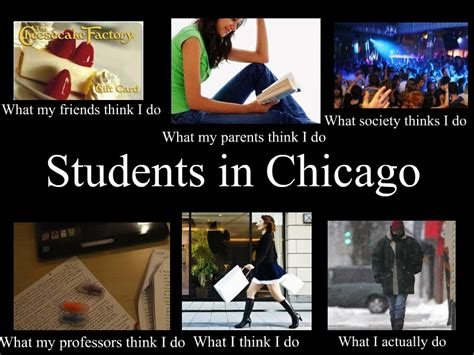 Chicago Memes Facebook - chicago student meme lillyopal