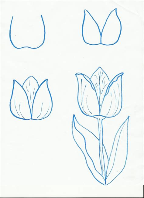 Drawing Ideas Step By Step  Pencil Art Drawing