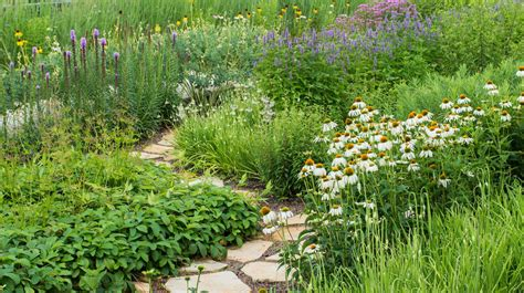 sustainable landscaping phipps safe lawn and landscaping phipps conservatory and botanical gardens pittsburgh pa