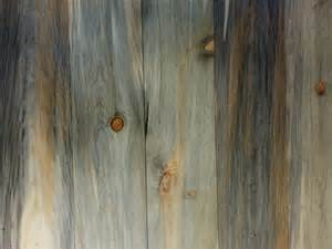 beetle kill pine products sustainable lumber company