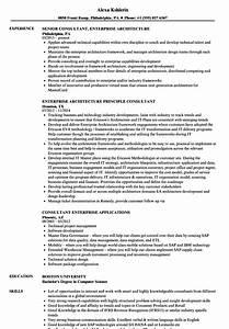enterprise consultant resume samples velvet jobs With netsuite consultant resume