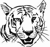 Tiger Coloring Pages Print sketch template