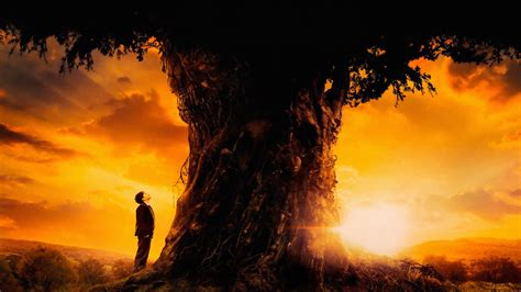A Monster Calls Full Hd Wallpaper And Background Image