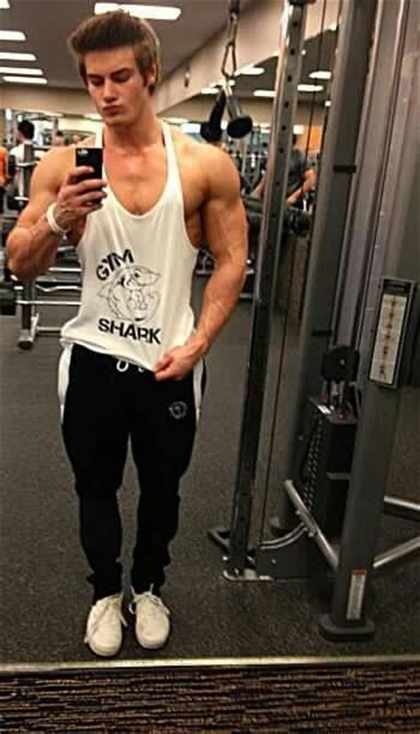 gym shark jeff seid pinterest gym  sharks