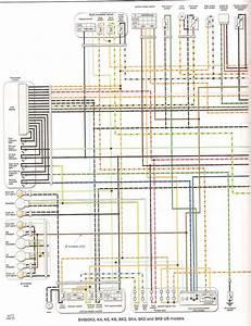 Faq  Colored Wiring Diagram -- U0026gt  All Sv650 Models