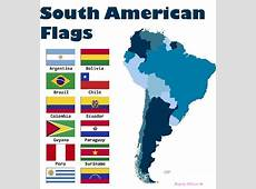 South American Flags; 12 South American Country flag set