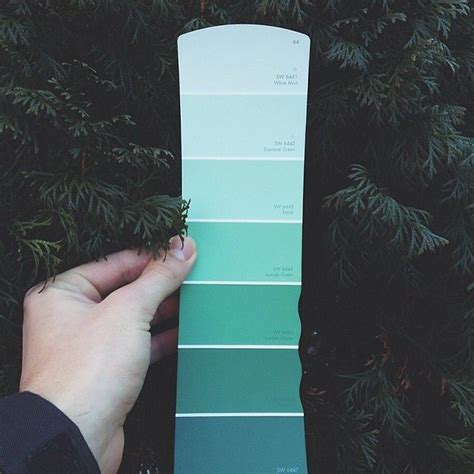 best about a card for every color paint color palettes you ll