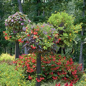 southern flower gardens 121 container gardening ideas raising container