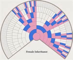 X Chromosome Inheritance Chart