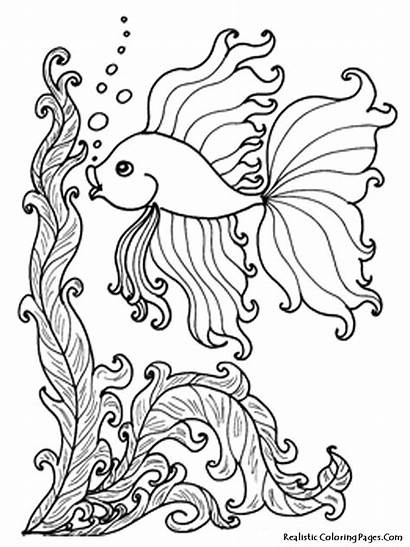 Coloring Pages Fish Realistic Ocean Printable Getcolorings