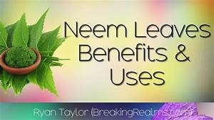 Neem Leaves  Health Benefits And Uses