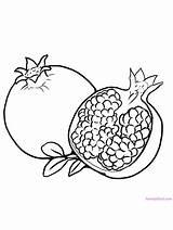 Pomegranate Coloring Fruit Preschool Printable Gaddynippercrayons sketch template
