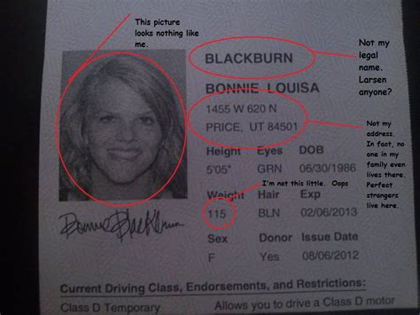 paper id template the of bon my driver s license is a liar