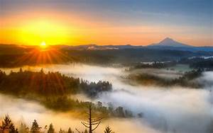 Sun Rises Ray HD Wallpapers - New HD Wallpapers