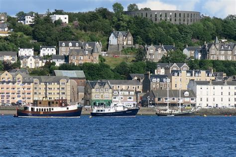 Boat Trip Oban by Etive Boat Trips Wildlife And Scenic Boat Trips Near Oban