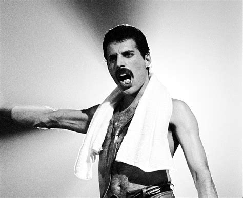 Freddie Mercury by Freddie Mercury Wallpapers Images Photos Pictures Backgrounds