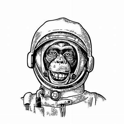 Astronaut Monkey Helmet Vector Illustration Engraving Smiling