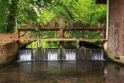 Schlosspark Und Englischer Garten (hugstetten) March