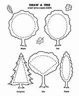 Coloring Arbor Pages Tree Draw Canopy Trees Flowers Honkingdonkey Plant Sheet Printable Drawing Sheets Age Crafts Planting Preschool Holiday God sketch template