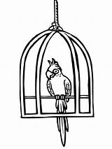 Cage Bird Coloring Parrot Pages Clipart Cages Printable Pet Paper Clipartmag Sheets Utilising Button Dog Grab Feel Piece sketch template