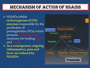 Prostaglandins And Pain Medications  Jill Scott Insomnia