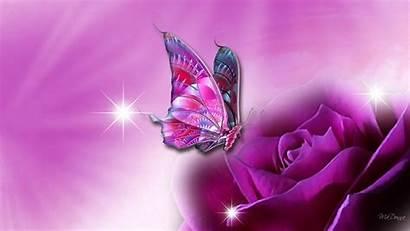Butterfly Wallpapers Butterflies Purple Pretty Backgrounds Desktop