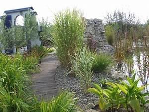Gräser Im Garten : gartengestaltung gr ser ~ Lizthompson.info Haus und Dekorationen