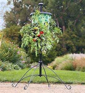 Super-Size Topsy-Turvy Upside-Down Tomato Tree - The Green