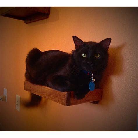 artisan   floating cat wall shelves