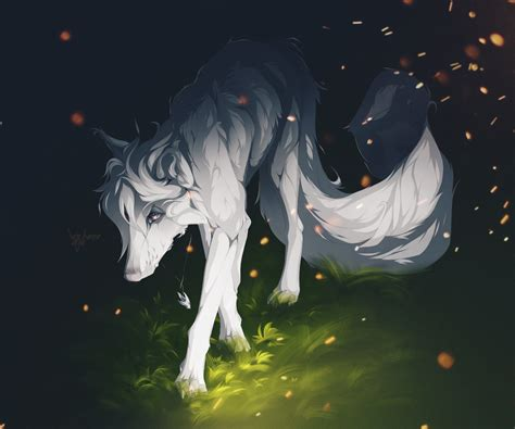 wallpaper white wolf long tail creature forest grass