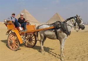 Egypt Accessible Tours | Handicapped Holiday | wheelchair ...