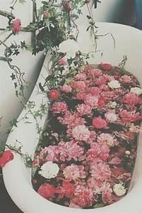 Carnation, On, Tumblr