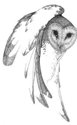 a desert fete in 2019 | Owl, Bird prints, Owl art