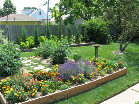 Backyards :  Backyard Evergreen Hedge
