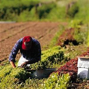 Organic Farming Methods | BioLinked Blog
