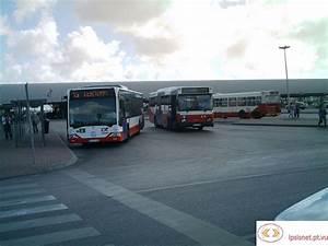 Transportes Online  Transportes Colectivos Do Barreiro
