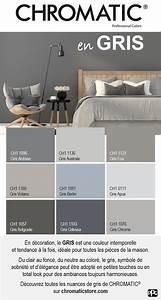 les 25 meilleures idees de la categorie cuisines grises With couleur peinture salon tendance 4 aviva fait aussi de lamenagement salon et des meubles tv