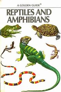 Reptiles and Amphibians | JUG Cloud