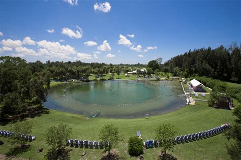 warm mineral springs floridas true fountain  youth