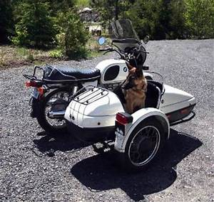 Sidecars and Dogs
