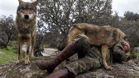 nyata kisah pantoja pria   dirawat oleh sekelompok binatang  hutan