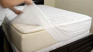 bed bug With do vinyl mattress covers protect against bed bugs