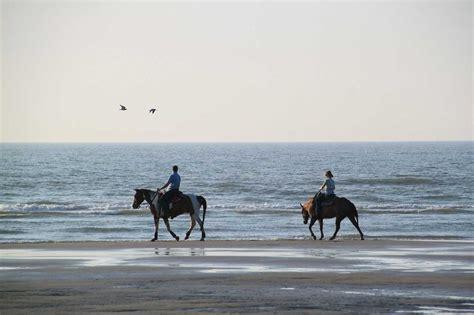 beach riding horseback florida horse horses tasting wine beaches go advice few words general bucket check floridarambler beach2