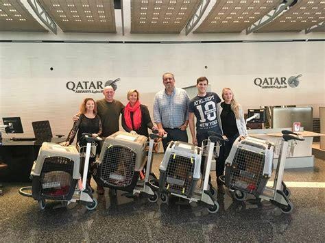 barkinq   rescue marhaba  qatars premier