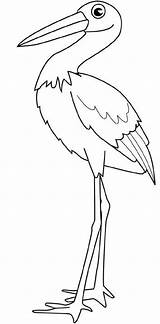 Stork Coloring Pages Colouring Pelican Bird Drawings sketch template