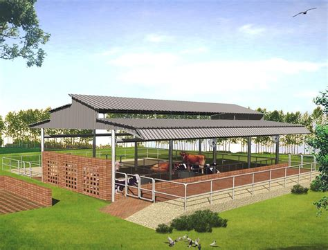 Dairy Cow Shed Design - modern cattle sheds punjab